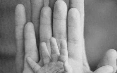 The Maternity Nurse Company Guide to Premature Birth
